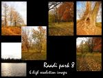 Raadi park 8 stock pack by Mithgariel-stock