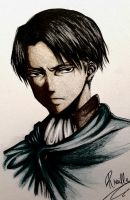 Levi by Hana--bee