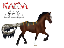 078 AS Kaida by BlueFire-Phoenix