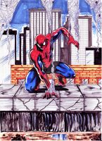 Spidey Color by hdub7