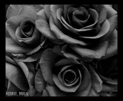 BLACK ROSE by Dezziree
