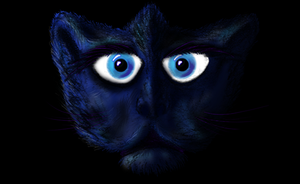 scary kitty by Eaglshadow
