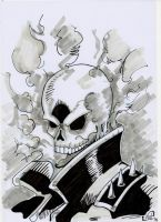 Ghost Rider by tenshiflyers