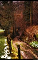 Hollow road, South Limburg, Netherlands by Autlaw