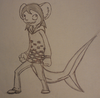 Chinchilla Shark for a friend by StitchesX0