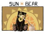 Sun Bear by AzzWrath