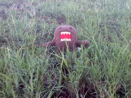 Domo and the Cane Field by Kai-Taks