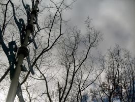 Seattle Center trees by MegaPIG1o1