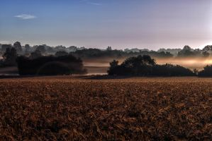 Paysage d'orne by hubert61