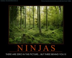 NINJAS... Motivational Poster by sirprime8