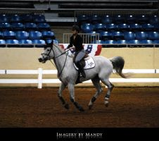 Gray Canter (7) by chantriera