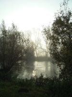 Nature 018 foggy by Dreamcatcher-stock