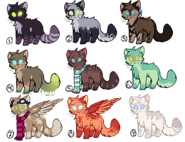 KittyAdoptables ll Closed ll by StarryEvening