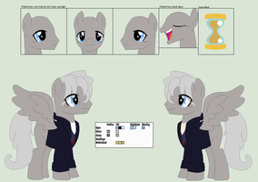 12th Doctor Ref.Sheet by PrimeFighterQue