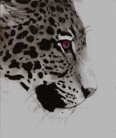 Jaguar by I-just-want-to-be-Mi