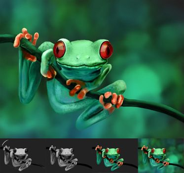 frog 2013.01.05 by mzenek