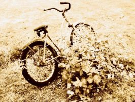 Old Bike No. 2 by Tusuami