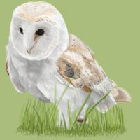 Barn Owl by Steph1254