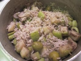 Chayote Squash, Jasmine Rice, and Garlic-Olives by Windthin