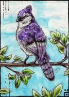 ACEO-PurpleHope by Cally-Dream