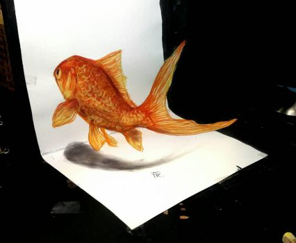 3d goldfish (video link below) by Yakise