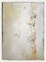 iPhoneography,  Of Ice and Straw by Gerald-Bostock