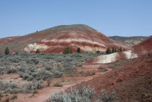 Painted Hills - Barbor Pole Hills by GreenEyezz-stock