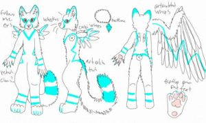 my fursuit reference by okami-wildclaw