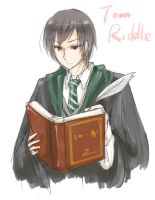 Riddle by haseo1333