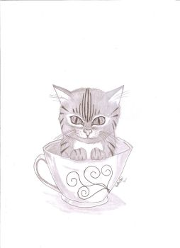 Cat in Cup by tinynath