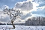 Winter part 2 jm1508 by joergens-mi