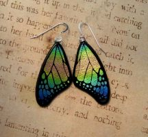 Rainbow Fused Glass Butterfly Wing Earrings by FusedElegance