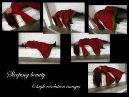 Sleeping beauty stock pack by Mithgariel-stock