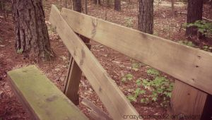 Bench In the Woods by hourglass-paperboats