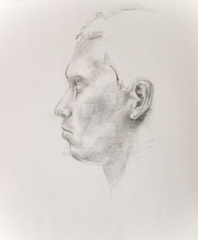 head study 1 by ErinFaye