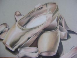 Pointe Shoes by shirley271