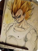 Vegeta by Telemaniakk