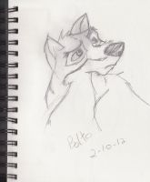 Balto Sketch by 777-Dragon