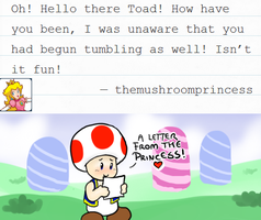 Ask Toad - Letter from Peach by pocket-arsenal