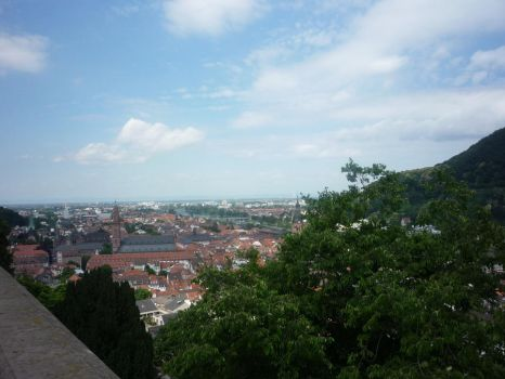 A View From Heidelberg Castle by Isis-Moon