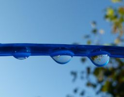 Sunshine after the rain.. by Cstinne