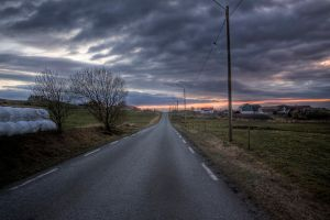 Road to the beach by Mizth