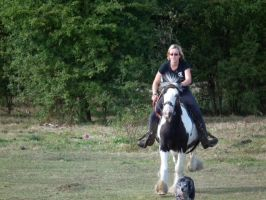 Galloping The Blue Eyed Gypsy Vanner Western by StarCrossedPsycho