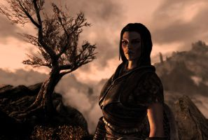 Skyrim character : Lydia by skyrimphotographer