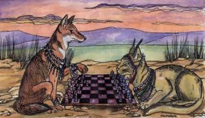 Chess with the Caracal by gpalmer