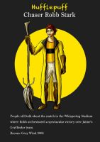 Robb Hufflepuff Chaser by guad