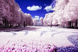 Warsaw infrared by buyniasty
