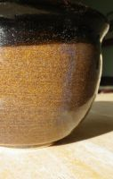 Speckled Bowl closeup by Bwabbit