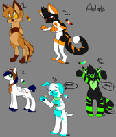 Adopts Batch2 ONE ADOPT LEFT by Letipup