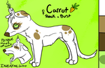 Carrot Sticks by Raven--Feather